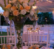 The Wedding of Annita and Kane by Jody Q Weddings