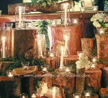 THE WEDDING OF DANDI AND TRISTY BY PETUIA DECOR Update 2 Agustus 2015 by Petunia Decor