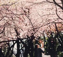 Tokyo Cherry Blossom Prewedding Photoshoot by Kleid Gown & Co.