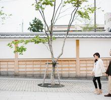 Selwyn Vitri   Japan Engagement Session by Carol by PYARA