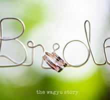 Sigit & Carollinna | The Wedding by The Wagyu Story