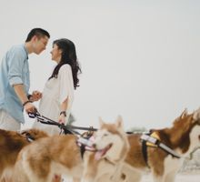 Melisca and Danny Couple Sessions with Huskies by Terralogical