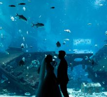 Marc and Adeline by Shane Chua Photography