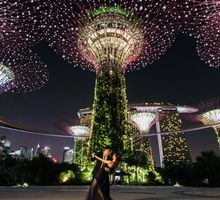 Gardens By The Bay by Shane Chua Photography