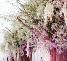 A Vineyard Fantasy by Heaven's Gift Wedding Concierge