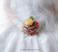 Alex and Stefani wedding by alienco photography