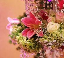 Fushia & White Romantic Wedding by Jonquilla Decor