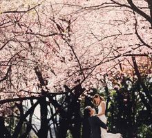 Tokyo Cherry Blossom Prewedding Photoshoot by Kleid Gown & Co.