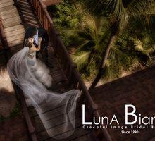 Contemporary Romance by Luna Bianca Graceful Image Bridal Boutique