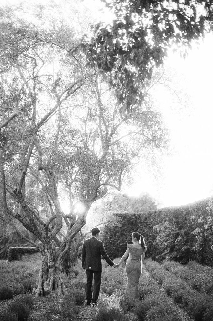 Chinese Tea Ceremony & Wedding in the Lavender Gardens of San Ysidro Ranch by Jen Huang Photo - 009