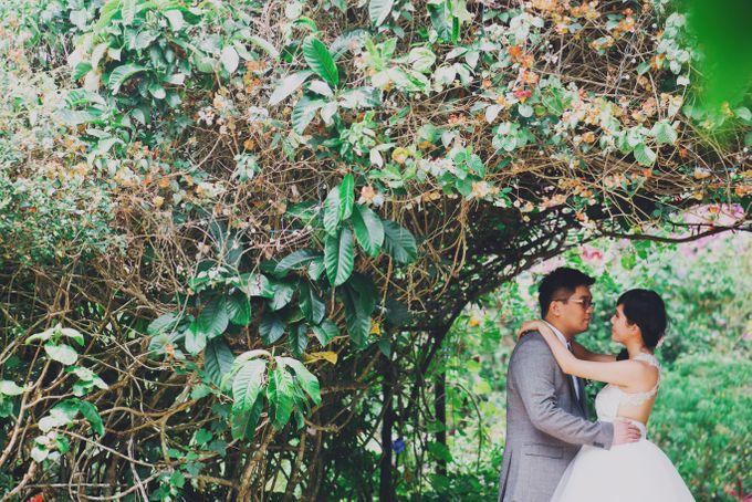 Intimate Wedding in Tagaytay - Charles and Carla by David Garmsen Photo and Video - 021