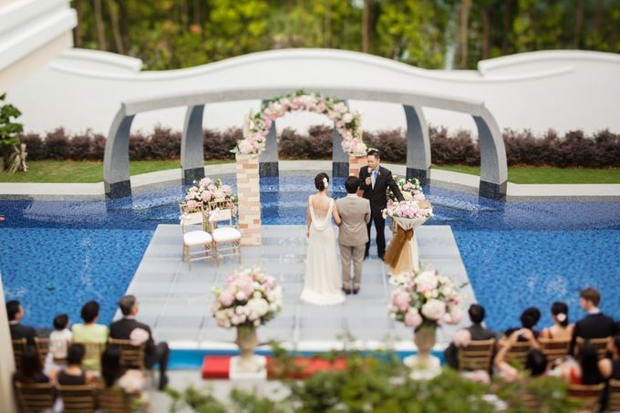 Love On Board by Spellbound Weddings - 018